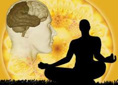 science-health-spirit