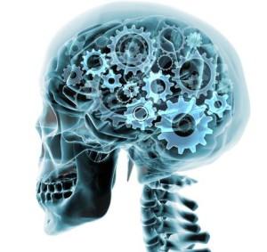 brain cogs